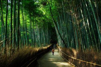 読むだけで嵐山マスターに!嵐山デートと観光におすすめのスポット15選♡