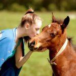 【夢占い】未来を教えてくれる!馬の夢の意味22選♡