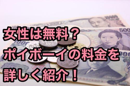 ポイボーイ評価評判料金紹介