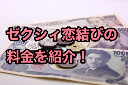 ゼクシィアプリ評判恋結び料金コスパ