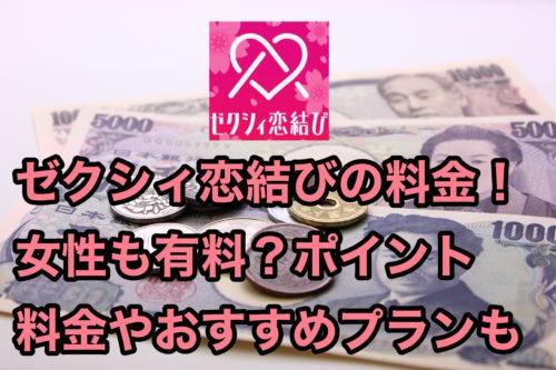 ゼクシィ恋結び_料金_女性は有料?_ポイント料金_おすすめプランを紹介
